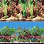 Фон аквариумный двухсторонний 60см
