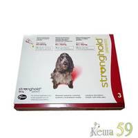Стронгхолд капли для собак 10-20кг инсекто-акарицидные, 1 пипетка