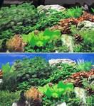 Фон аквариумный двухсторонний 50см