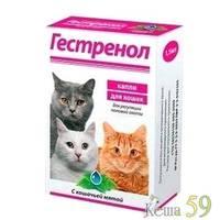 Гестренол для кошек капли