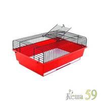 Клетка для грызунов Марк №1 цветная 37x26x17см