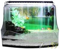 Акватеррариум с аквариумом и светодиодным светильником 62x48x19см
