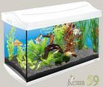Tetra аквариумный комплекс AquaArt Discover Line 60л