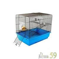 Клетка для грызунов Сева цветная 37x26x23см
