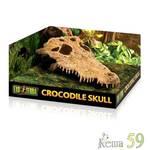 Exo Terra Декор для террариума Череп крокодила