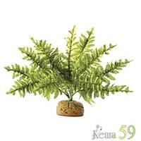 Exo Terra Растение для террариума Кактус звезда