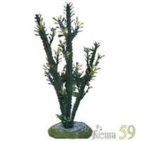 ReptiZOO Террариумное растение Молочай 36см