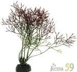 Barbus Искусственное растение Горгонария черная 10см