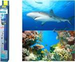 Tetra Фон для аквариума Акула и кораллы 60x45см