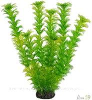Искусственное растение Амбулия 19см